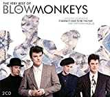 Best Of The Blow Monkeys [Import allemand]