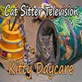 Kitty Daycare - Cat Sitter Television