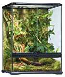 Exo Terra - Rainforest/PT2662 - Kit vivarium - Taille M