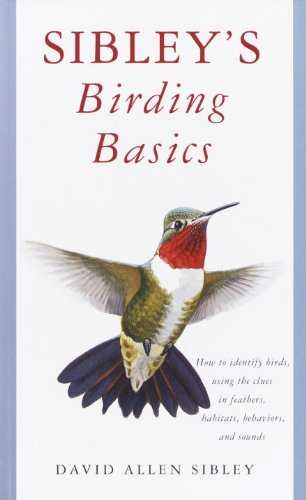 Sibley's Birding Basics (English Edition)