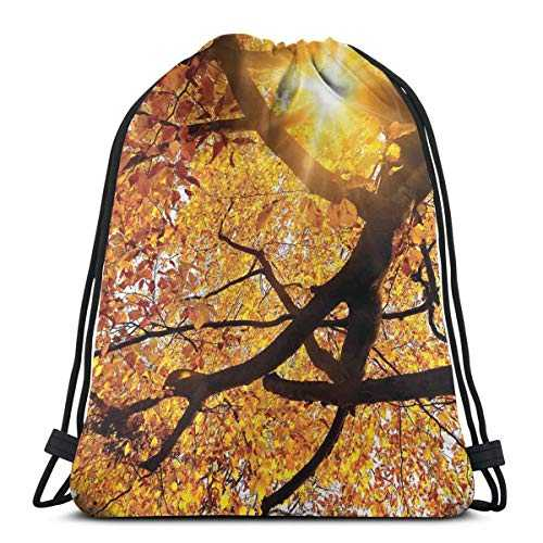BBABYY Printed Drawstring Backpacks Bags,Sun Through Leaf Golden Yellow Vivid October Foliage Harvest Serene Paradise Photo Art,Adjustable String Closure