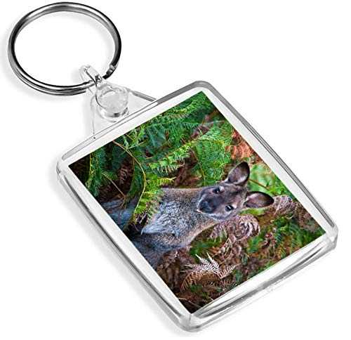 Red Necked Wallaby Australie Keyring Keyring Wild Animal Gift # 12464