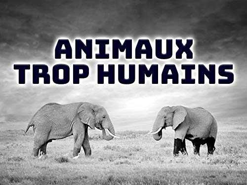Animaux Trop Humains