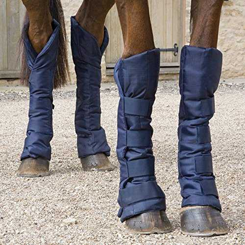 (Navy Blue, Full) - Shires Travel Sure Economy Travelling Boots